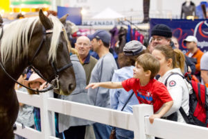 Moment captured at the 2013 Royal Agricultural Fair