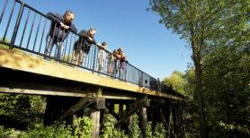 Enjoying the view from the Uxbridge Trestle Bridge. Photo: Blower Media