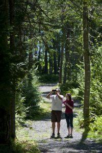 Fundy Trail Parkway New Brunswick