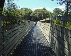 WaterfrontTrail_crop