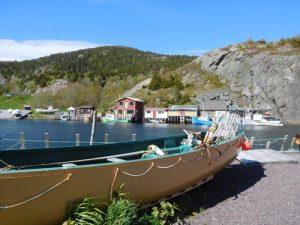 View of Quid Vidi Newfoundland