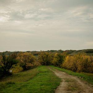 A trail runs through short grass and towards trees