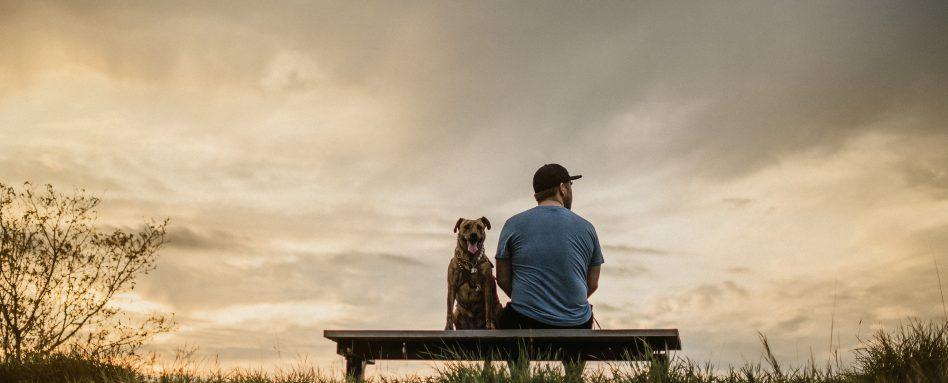 A dog sits on a bench with a man in front of a cloudy sky