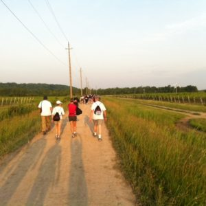 Laura Secord Walk through vineyards of Queenston, Ont.