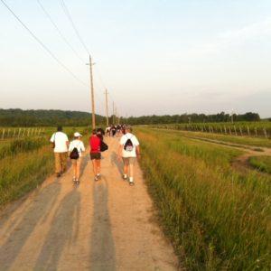 Laura Secord Walk through vineyards of Queenston, Ont.