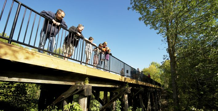 Enjoying the view from the Uxbridge Trestle Bridge. Photo: Blower Media