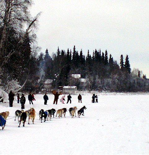 James-Brooks_Dog_Sledding_Crop2