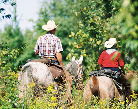 QC_Horseback-riding_credit-Cheval-Quebec_crop