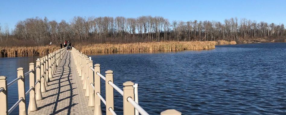 A repaired boardwalk passes over a beautiful wetland in Yorkton, Saskatchewan.