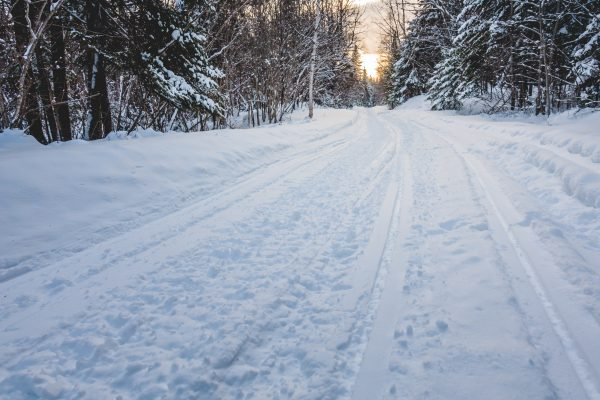 A groomed snowmobile trail in Quebec winding through a forest at dawn.A groomed snowmobile trail in Quebec winding through a forest at dawn..