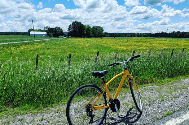 Paysage bucolique et vélo communautaire