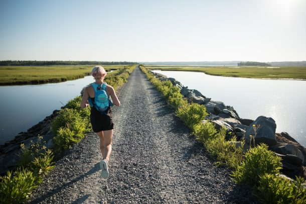 Salt Marsh Trail